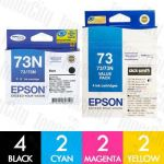 Epson 73N 10 Pack Genuine Inkjet Cartridge Combo